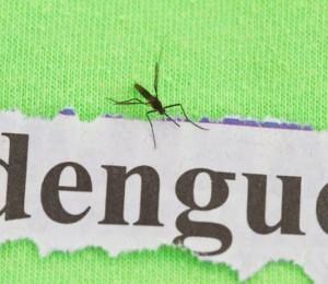 Acre sofre com o aumento do número de casos de dengue neste início de ano